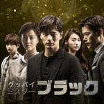 韓国ドラマ「グッバイ ミスターブラック」無料動画視聴!あらすじ感想も